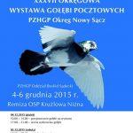 [Krużlowa Niżna]: Wystawa Gołębi Pocztowych