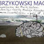 Albrzykowski Maciej i mózg
