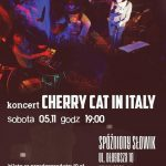 Cherry cat in Italy w Słowiku