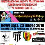 II Międzynarodowy Halowy Turniej w Piłce Nożnej Dziewcząt