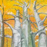 Korony drzew jesienią, autorka: Teresa Rogoń